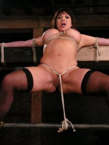 Hard fetish pictures of mature porn star Ava Devine!